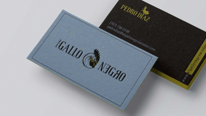 GALLONEGRO-mockups-03-cards-2-b_1920x0180px